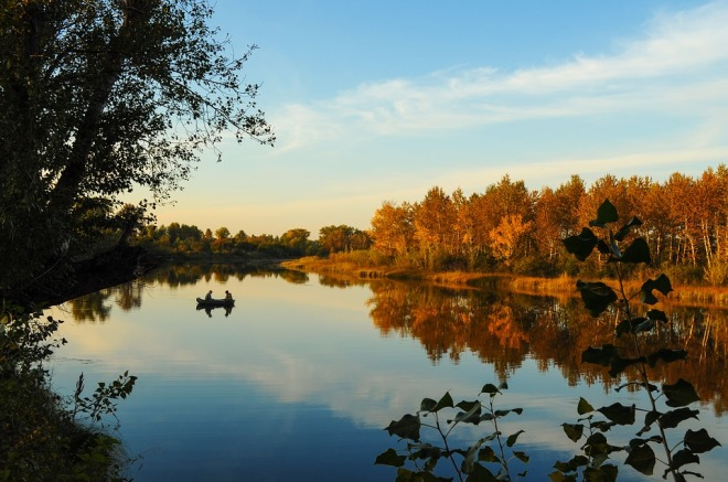 autumn-1659792_960_720