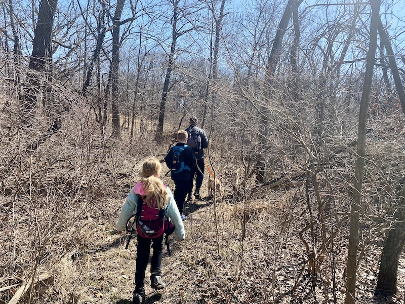 hiking in Deer Grove Forest Preserve