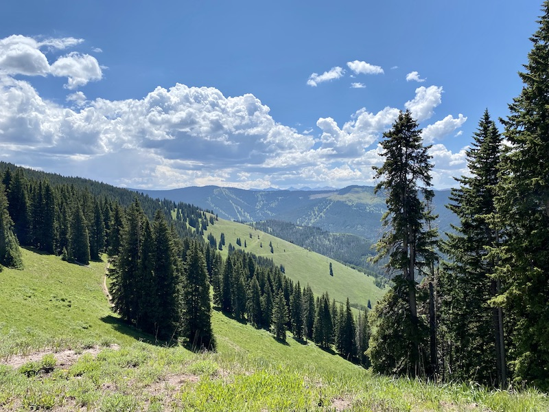 Vail Mountain in summer